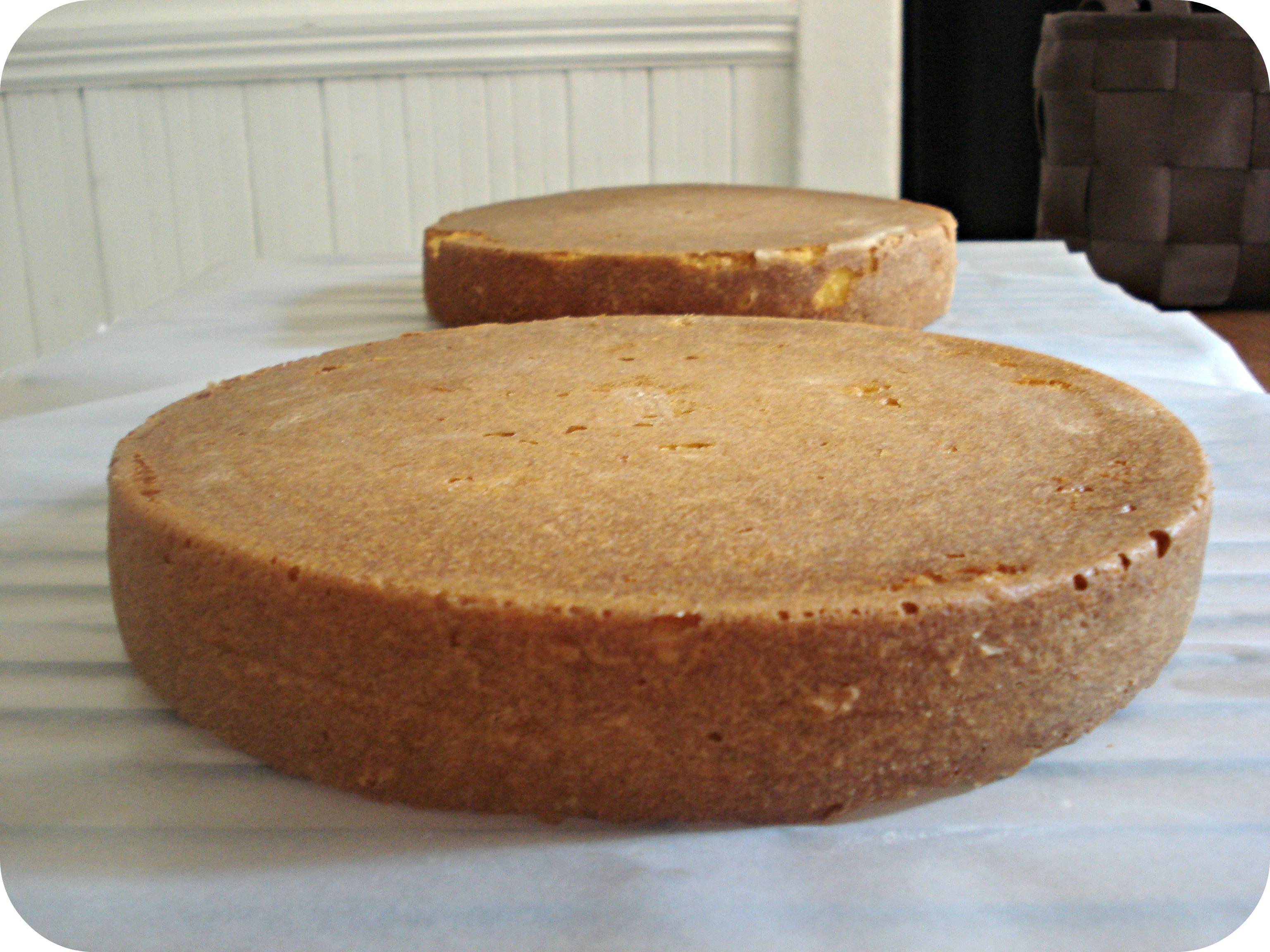 Versatile Vanilla Cake Recipes — Dishmaps